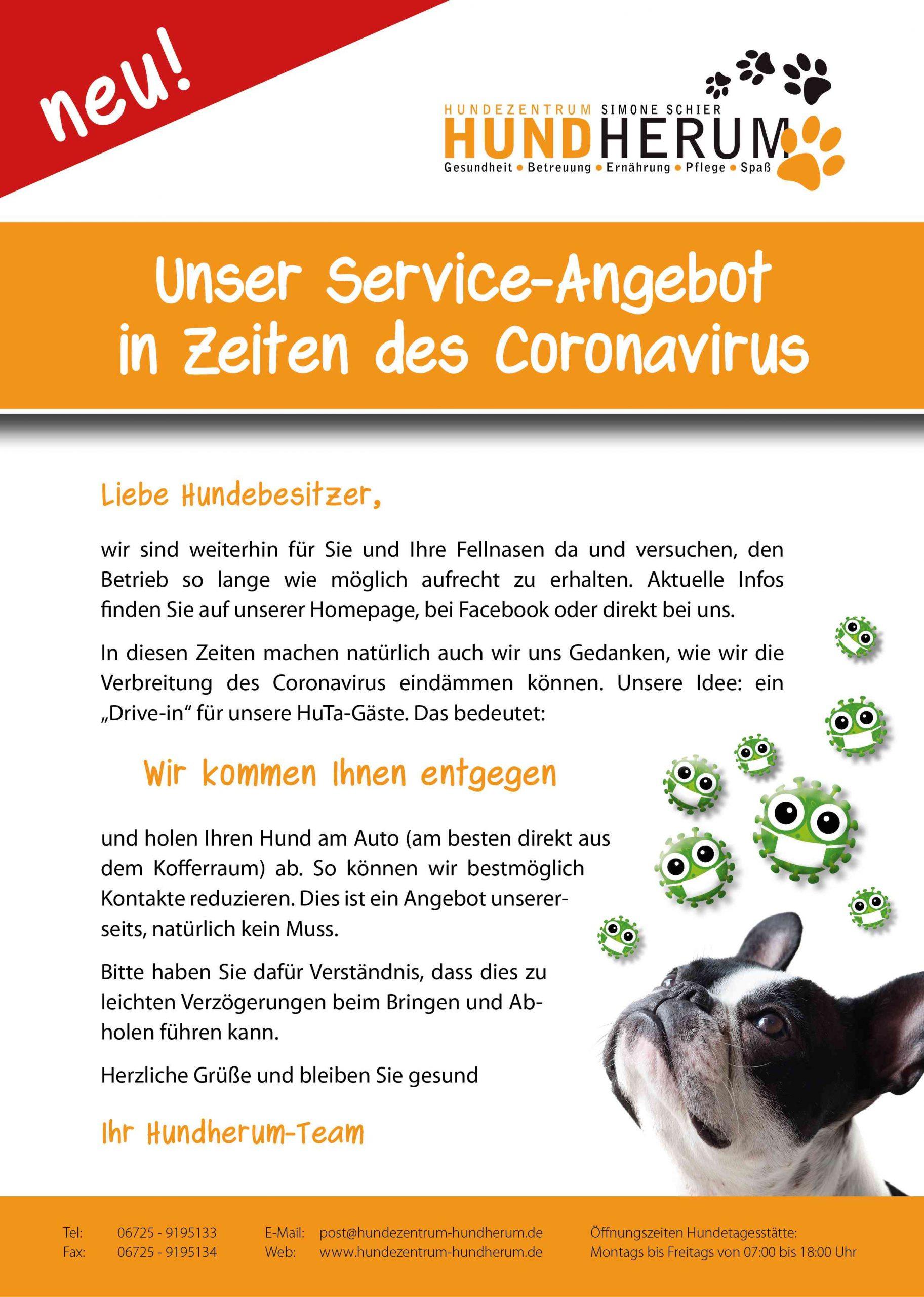 Coronavirus_Drive-in